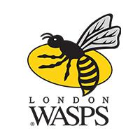 Club Rugby Wasps