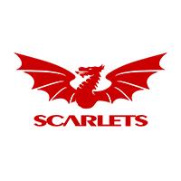 Club Rugby Scarlets